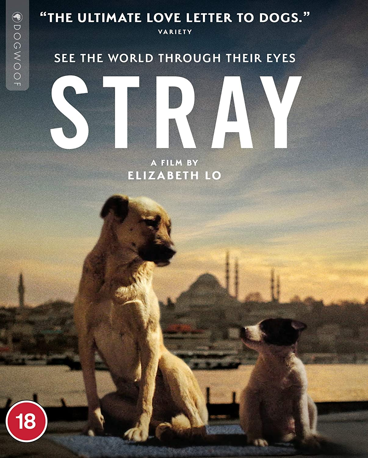 boom competitions -  win Stray on Blu-ray